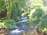 The Sgithwen Brook next the campsite